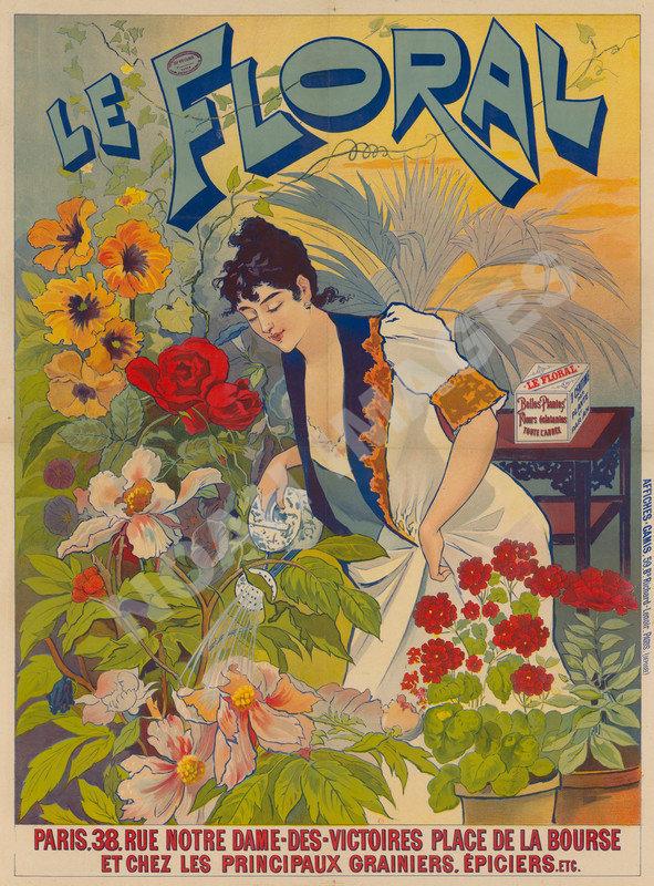 Khanuma Poster////Khanuma Movie Poster////Movie Poster////Poster Reprint